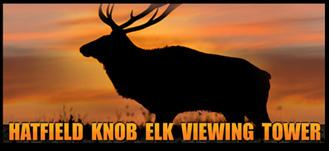 Tennessee Elk Viewing Tower